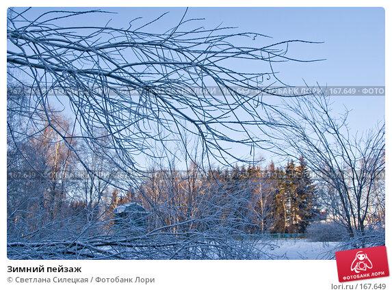 Зимний пейзаж, фото № 167649, снято 7 января 2008 г. (c) Светлана Силецкая / Фотобанк Лори