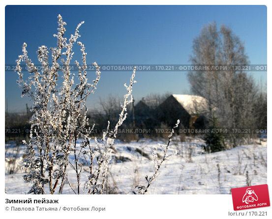 Купить «Зимний пейзаж», фото № 170221, снято 4 января 2008 г. (c) Павлова Татьяна / Фотобанк Лори
