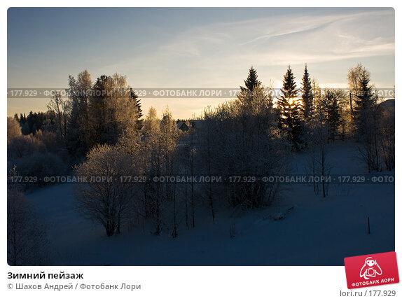 Купить «Зимний пейзаж», фото № 177929, снято 9 января 2008 г. (c) Шахов Андрей / Фотобанк Лори