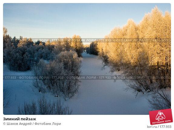 Купить «Зимний пейзаж», фото № 177933, снято 9 января 2008 г. (c) Шахов Андрей / Фотобанк Лори