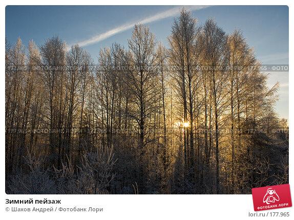 Зимний пейзаж, фото № 177965, снято 9 января 2008 г. (c) Шахов Андрей / Фотобанк Лори