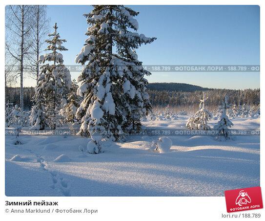 Зимний пейзаж, фото № 188789, снято 27 января 2008 г. (c) Anna Marklund / Фотобанк Лори