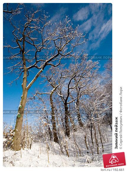 Зимний пейзаж, фото № 192661, снято 28 января 2008 г. (c) Сергей Попсуевич / Фотобанк Лори