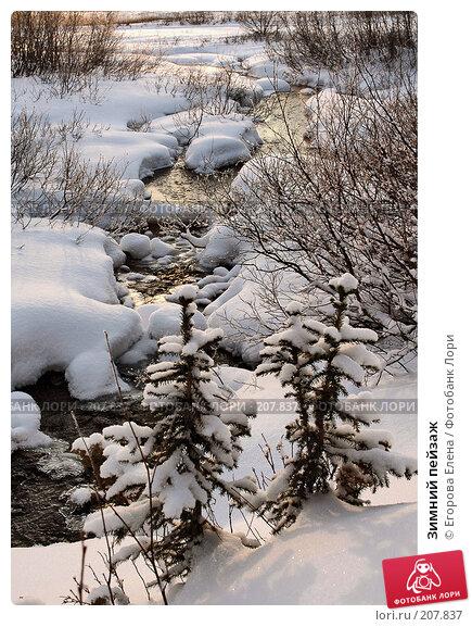Зимний пейзаж, фото № 207837, снято 21 октября 2007 г. (c) Егорова Елена / Фотобанк Лори