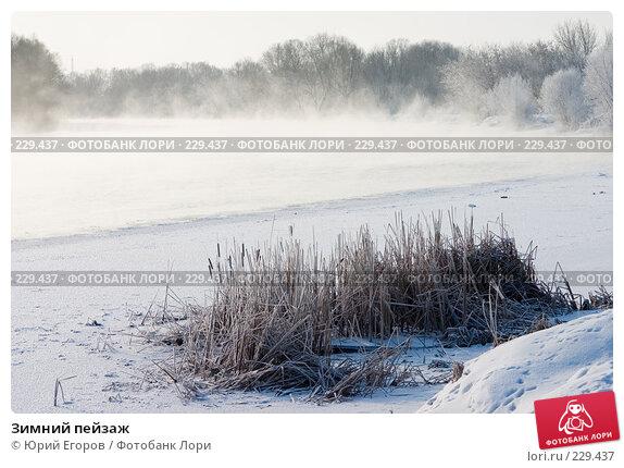 Зимний пейзаж, фото № 229437, снято 2 января 2008 г. (c) Юрий Егоров / Фотобанк Лори