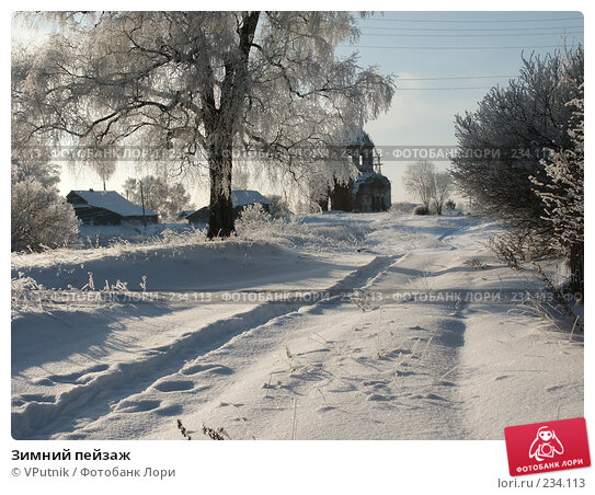 Купить «Зимний пейзаж», фото № 234113, снято 30 ноября 2004 г. (c) VPutnik / Фотобанк Лори