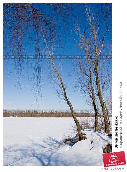 Зимний пейзаж, фото № 238993, снято 23 марта 2017 г. (c) Кравецкий Геннадий / Фотобанк Лори