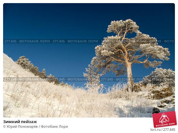 Зимний пейзаж, фото № 277845, снято 17 января 2008 г. (c) Юрий Пономарёв / Фотобанк Лори