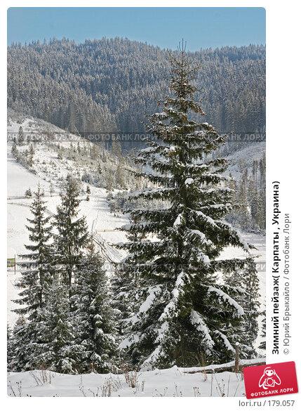 Зимний пейзаж( Карпаты , Украина), фото № 179057, снято 17 ноября 2007 г. (c) Юрий Брыкайло / Фотобанк Лори