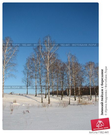 Зимний пейзаж с березами, фото № 182441, снято 20 января 2008 г. (c) Ирина Андреева / Фотобанк Лори