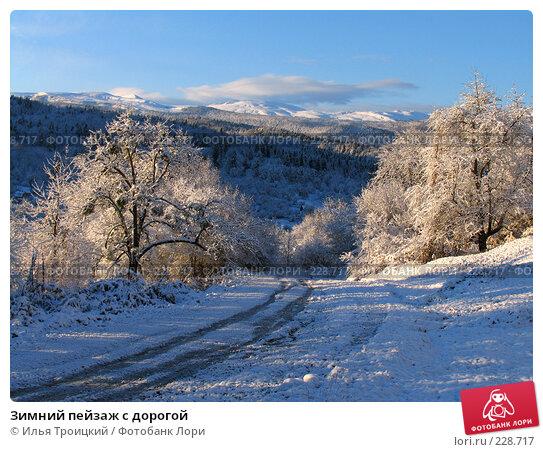 Зимний пейзаж с дорогой, фото № 228717, снято 23 ноября 2005 г. (c) Илья Троицкий / Фотобанк Лори