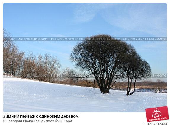 Зимний пейзаж с одиноким деревом, фото № 113661, снято 30 января 2007 г. (c) Солодовникова Елена / Фотобанк Лори