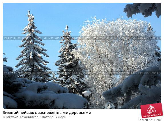 Зимний пейзаж с заснеженными деревьями, фото № 211281, снято 12 декабря 2007 г. (c) Михаил Коханчиков / Фотобанк Лори