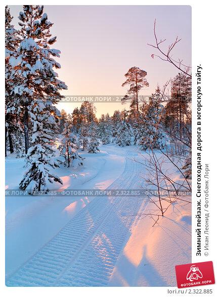 Купить «Зимний пейзаж. Снегоходная дорога в югорскую тайгу.», фото № 2322885, снято 5 февраля 2011 г. (c) Икан Леонид / Фотобанк Лори