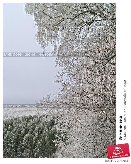 Зимний вид, фото № 297961, снято 19 января 2008 г. (c) Максим Пименов / Фотобанк Лори