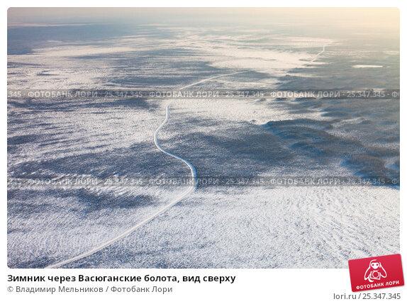 Купить «Зимник через Васюганские болота, вид сверху», фото № 25347345, снято 8 февраля 2017 г. (c) Владимир Мельников / Фотобанк Лори