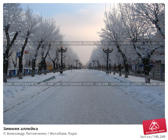 Зимняя аллейка, фото № 146249, снято 8 декабря 2007 г. (c) Александр Литовченко / Фотобанк Лори