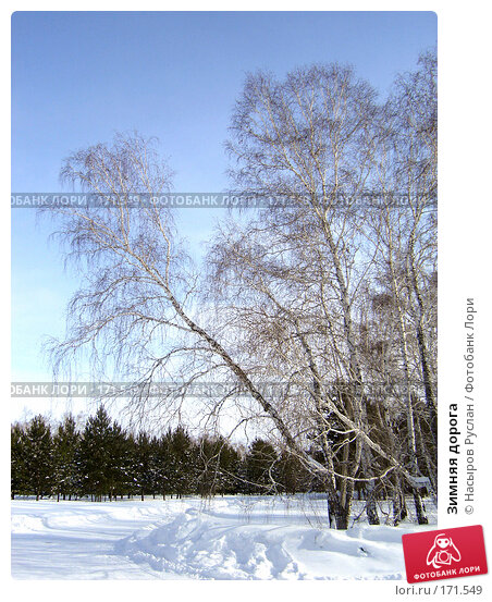 Зимняя дорога, фото № 171549, снято 1 марта 2007 г. (c) Насыров Руслан / Фотобанк Лори