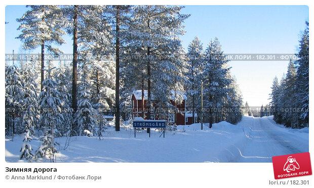 Купить «Зимняя дорога», фото № 182301, снято 22 февраля 2005 г. (c) Anna Marklund / Фотобанк Лори