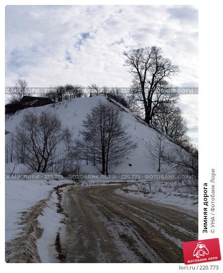 Купить «Зимняя дорога», фото № 220773, снято 23 февраля 2008 г. (c) УНА / Фотобанк Лори