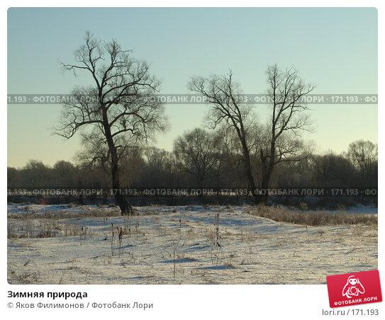 Зимняя природа, фото № 171193, снято 3 января 2008 г. (c) Яков Филимонов / Фотобанк Лори