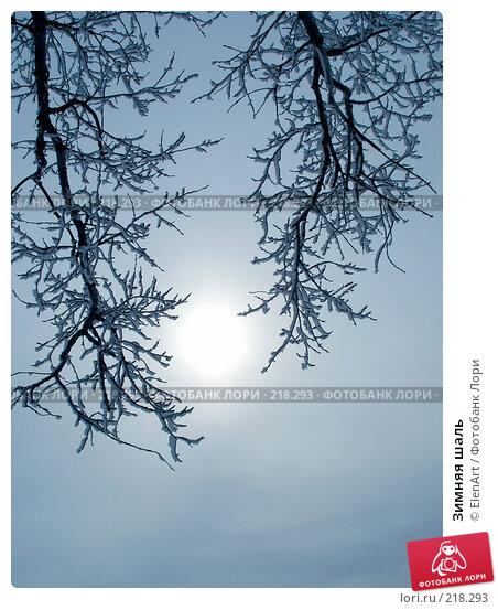 Зимняя шаль, фото № 218293, снято 22 февраля 2017 г. (c) ElenArt / Фотобанк Лори