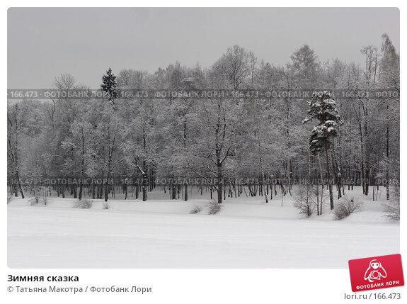 Зимняя сказка, фото № 166473, снято 15 февраля 2007 г. (c) Татьяна Макотра / Фотобанк Лори