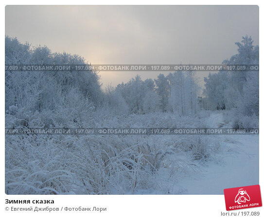 Зимняя сказка, фото № 197089, снято 8 декабря 2007 г. (c) Лысых Константин / Фотобанк Лори