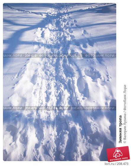 Зимняя тропа, фото № 208473, снято 22 февраля 2008 г. (c) Валерия Потапова / Фотобанк Лори