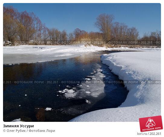 Зимняя Уссури, фото № 202261, снято 10 февраля 2008 г. (c) Олег Рубик / Фотобанк Лори