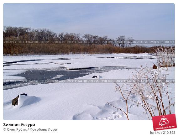Купить «Зимняя Уссури», фото № 210893, снято 27 февраля 2008 г. (c) Олег Рубик / Фотобанк Лори