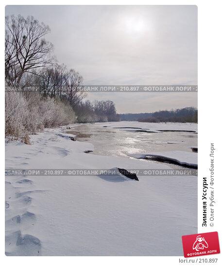 Зимняя Уссури, фото № 210897, снято 27 февраля 2008 г. (c) Олег Рубик / Фотобанк Лори