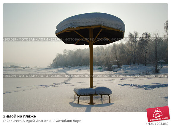 Купить «Зимой на пляже», фото № 203069, снято 2 февраля 2008 г. (c) Селигеев Андрей Иванович / Фотобанк Лори