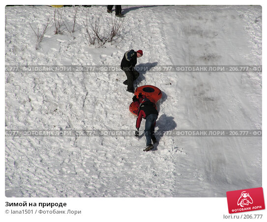 Зимой на природе, эксклюзивное фото № 206777, снято 3 февраля 2008 г. (c) lana1501 / Фотобанк Лори