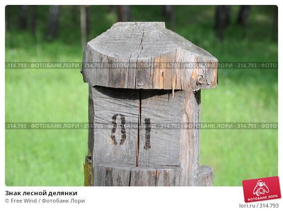 Знак лесной делянки, эксклюзивное фото № 314793, снято 8 июня 2008 г. (c) Free Wind / Фотобанк Лори