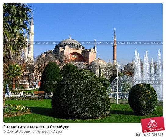 Знаменитая мечеть в Стамбуле (2006 год). Стоковое фото, фотограф Сергей Афонин / Фотобанк Лори