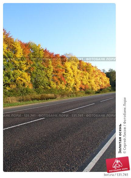Купить «Золотая осень», фото № 131741, снято 24 сентября 2006 г. (c) Сергей Лисов / Фотобанк Лори