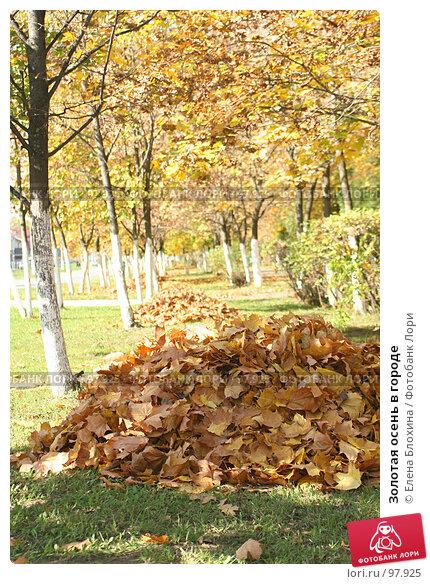 Золотая осень в городе, фото № 97925, снято 1 октября 2007 г. (c) Елена Блохина / Фотобанк Лори