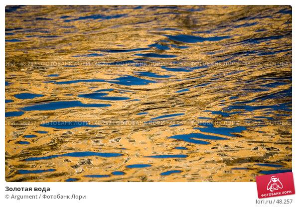Золотая вода, фото № 48257, снято 15 декабря 2006 г. (c) Argument / Фотобанк Лори