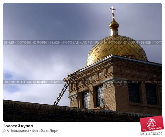 Золотой купол, фото № 38629, снято 26 февраля 2017 г. (c) A Челмодеев / Фотобанк Лори