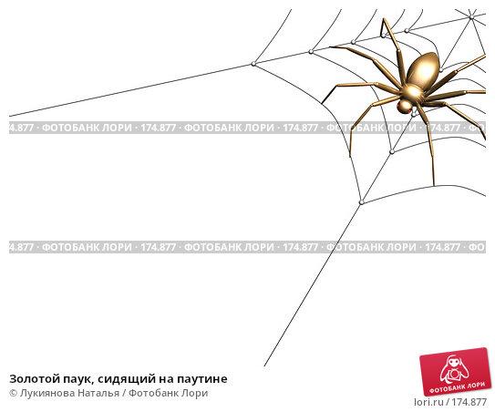 Золотой паук, сидящий на паутине, иллюстрация № 174877 (c) Лукиянова Наталья / Фотобанк Лори