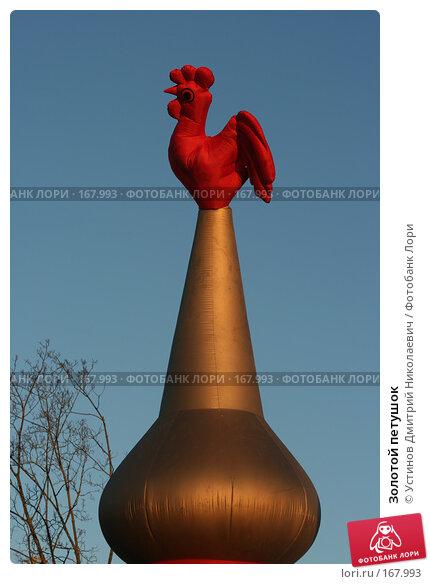 Купить «Золотой петушок», фото № 167993, снято 3 января 2008 г. (c) Устинов Дмитрий Николаевич / Фотобанк Лори