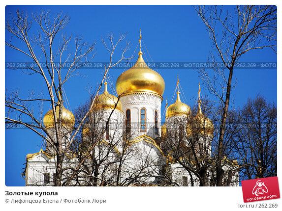 Золотые купола, фото № 262269, снято 21 апреля 2008 г. (c) Лифанцева Елена / Фотобанк Лори