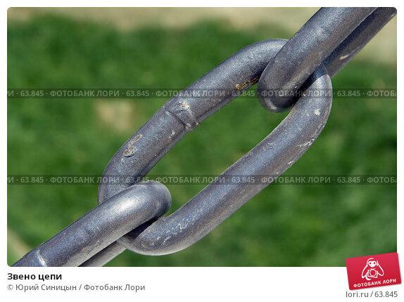Звено цепи, фото № 63845, снято 13 июля 2007 г. (c) Юрий Синицын / Фотобанк Лори
